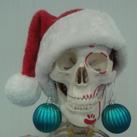 Close up of model skull wearing a christmas hat